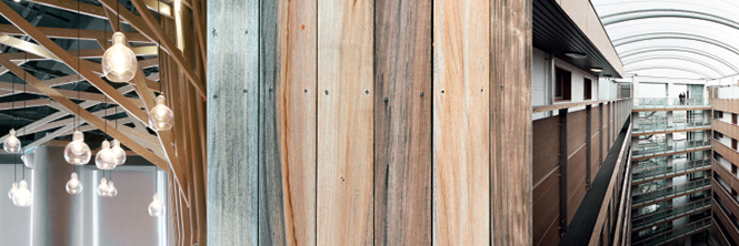 HPL Urban Collection Holz Repro 665X234